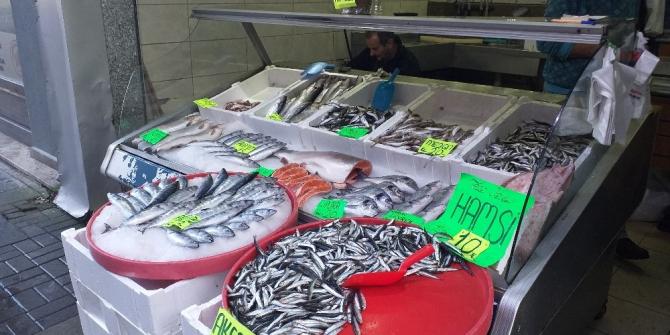 Karadenizli balıkçılar tüm ümitlerini hamsiye bağladı