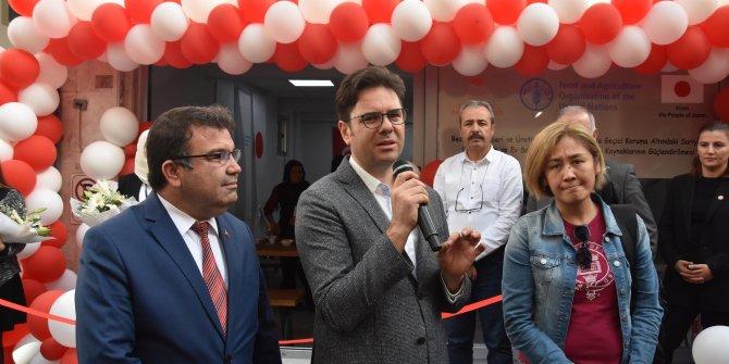 Suriyeli ve Türk kadınlar, kooperatif kurup midye satış yeri açtı