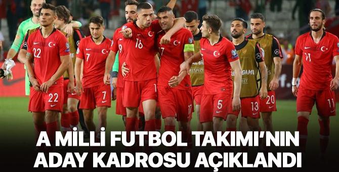 A Milli Futbol Takımı'mızın aday kadrosu açıklandı