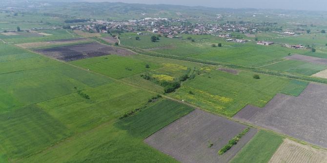 Bursa, Yalova ve Kocaeli'de 123 bin 150 dekar alanda toplulaştırma yapıldı