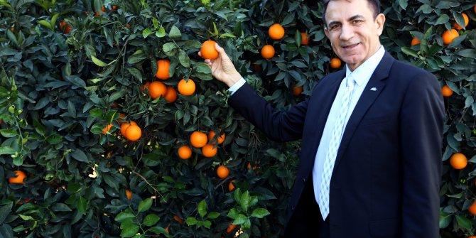 Akdeniz'den ihracat 13,5 milyar dolara ulaştı