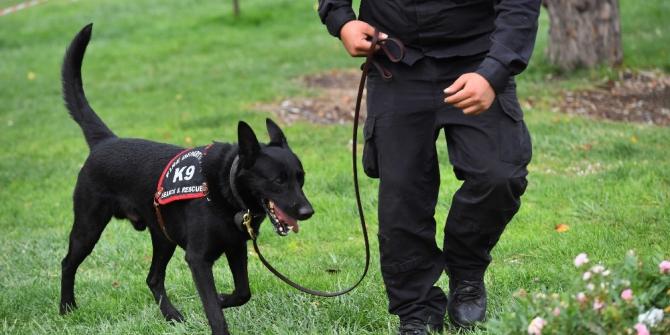 Ankara itfaiyesi K-9 köpekleri artık lisanslı