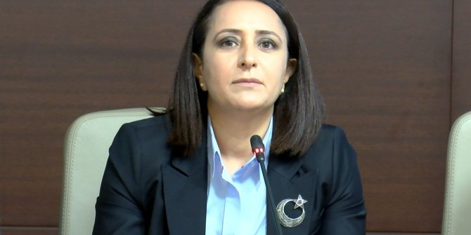 Kadın mülki idare amirlerinden, 'kadına ve aileye yönelik şiddet olayları' açıklaması