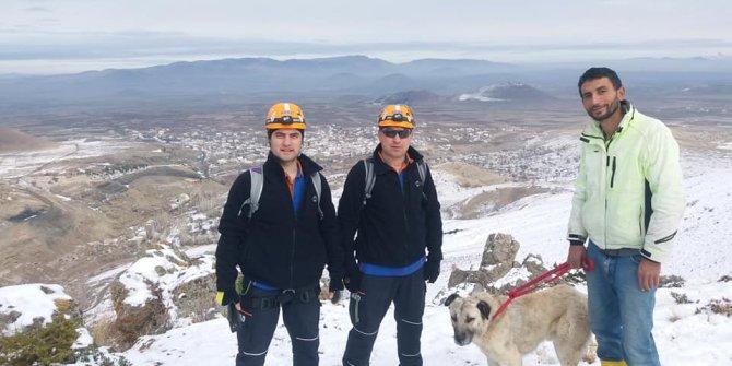 Karla kaplı kayalıklarda mahsur kalan köpek kurtarıldı