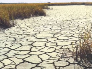 D.K.E Açıkladı: Su kıtlığı çekecek ülkeler arasındayız