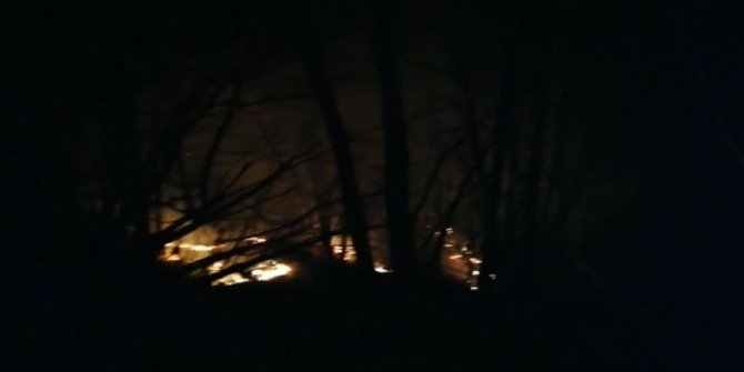 Rize ve Trabzon'da yeni orman yangınları