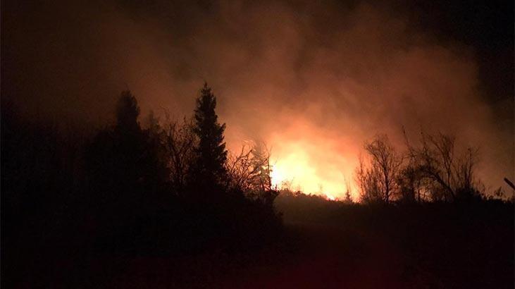 İçişleri Bakanlığı'ndan Karadeniz'de çıkan yangınlara ilişkin açıklama