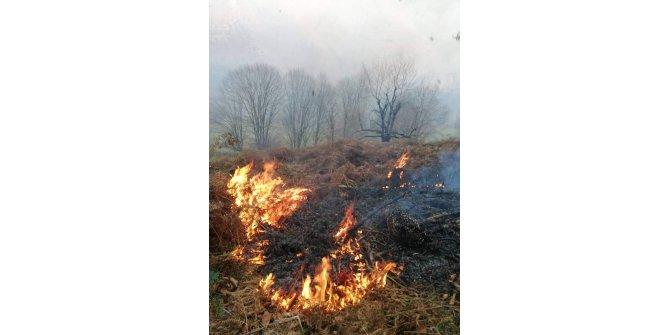 Samsun'da 13 noktada çıkan örtü yangınları kontrol altına alındı