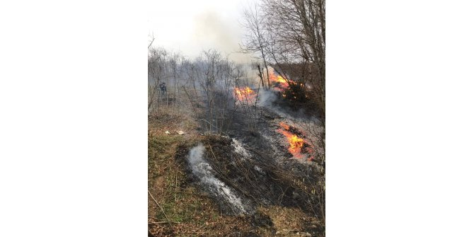 Karadeniz'de 5 ilde 71 noktada yangınlar sürüyor