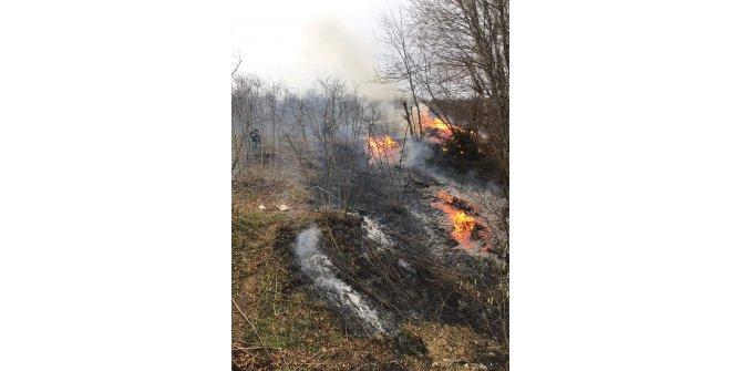 Karadeniz'de 3 ilde 10 noktada yangınlar sürüyor (5)