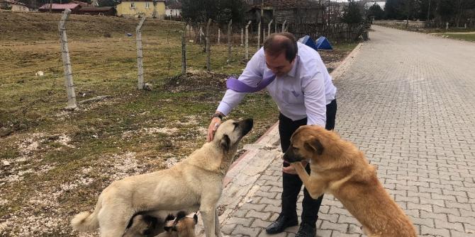 Spor İl Müdürü, sevgi gösteren sokak hayvanlarına duyarsız kalmadı