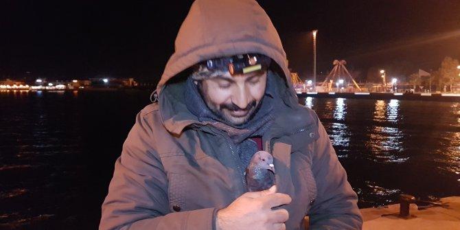 Balıkçı, üşüyen güvercini parkasında ısıttı