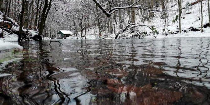 Yedigöller Milli Parkı'nda kış manzaraları