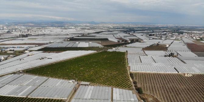 Mersin'de kuvvetli yağış ekili alanları vurdu