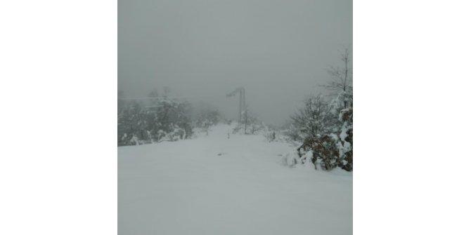 İnegöl'de kar ağaç dallarını kırdı, elektrikler kesildi