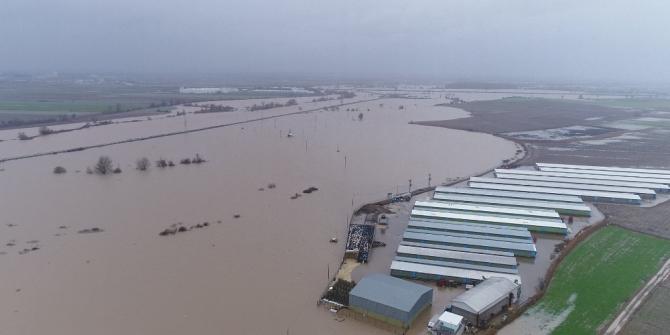 Hırsızlar sele sebep oldu...Binlerce dönüm ekili alan ve 2 bin boğa sular altında kaldı