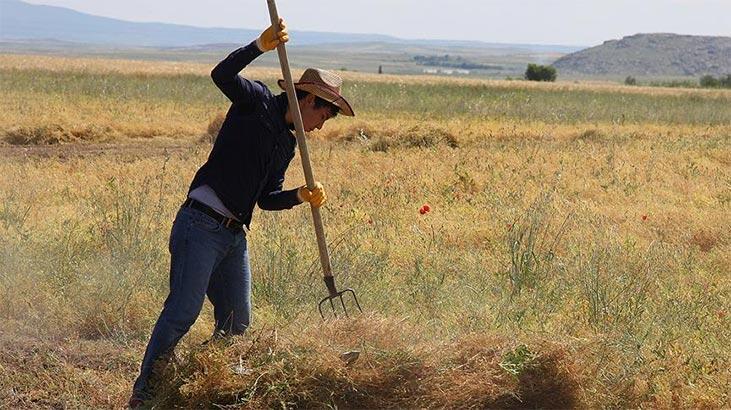 Bakan Albayrak'tan çiftçilere müjde