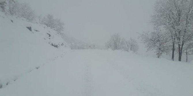 Bingöl'de 28 köy yolu kardan kapandı