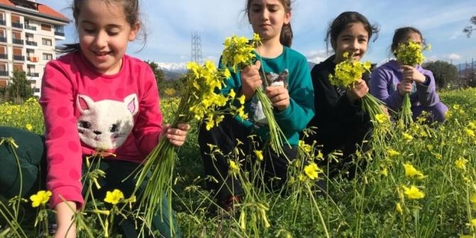 Antalya'da kış ortasında bahar sevinci