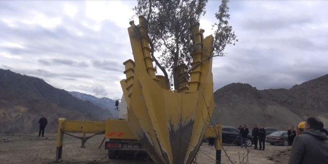 Baraj gölü suları altında kalacak Yusufeli'nden ağaçlar da taşınıyor