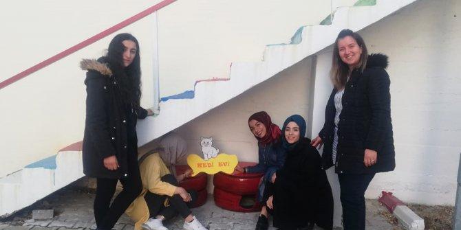 Öğrenciler, hurda lastikleri sokak kedileri için yuvaya dönüştürdü