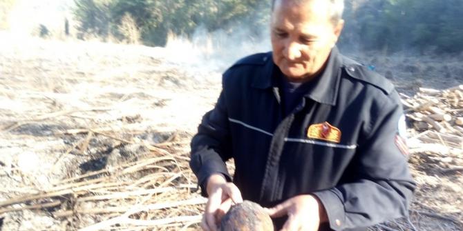 Seydikemer'de yanmak üzere olan kaplumbağayı itfaiye ekipleri kurtardı
