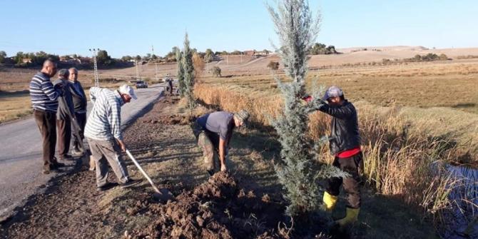 Köy halkı kendi imkanlarıyla 300 fidan dikti