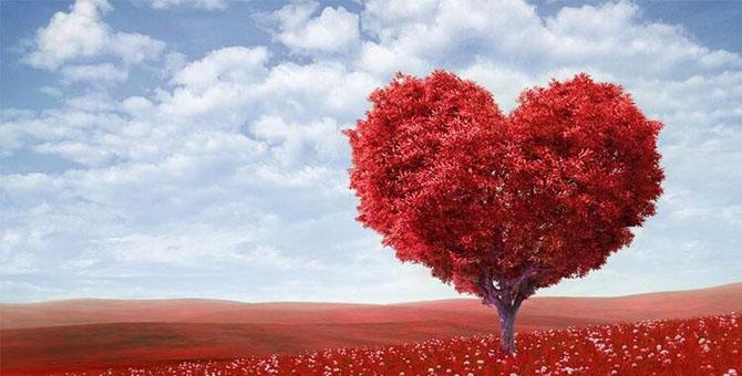 Çiçek Sepeti 14 Şubat Sevgililer Günü indirimleri, kampanyaları 2020