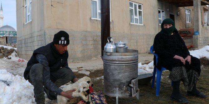 Depremzedeler, üşüyen hayvanlarını ısıtmaya çalışıyor