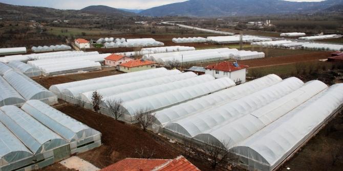 Seracılık köyden şehre göçü durdurdu