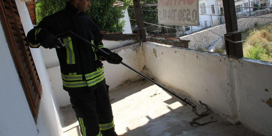 Evin balkonuna giren yılanı itfaiye çıkarttı