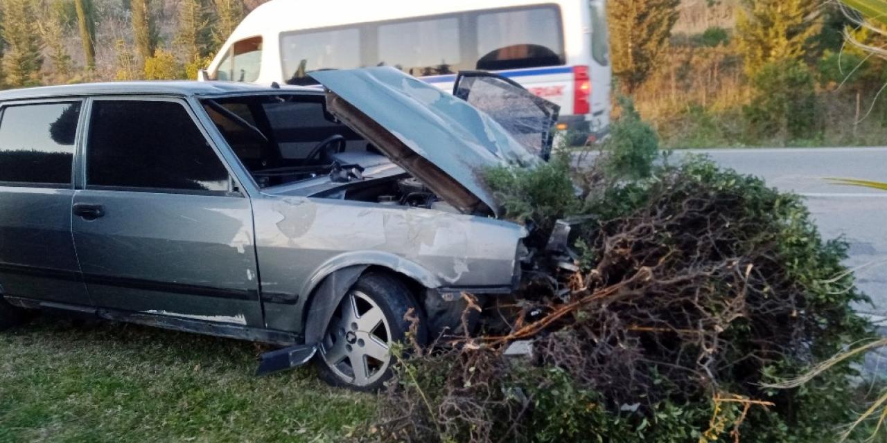 Otomobil refüjdeki ağaçları yerinden söktü