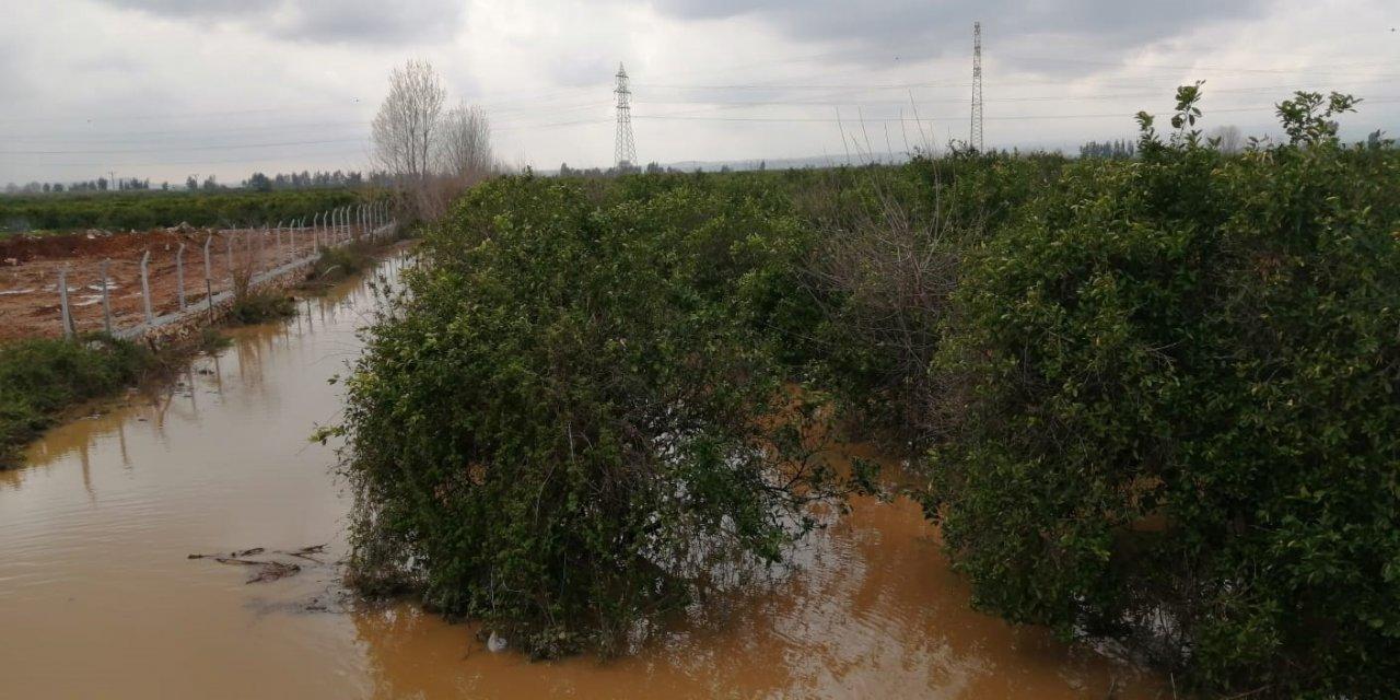 Kozan'da sağanak; bahçeler ve tarlalar su altında