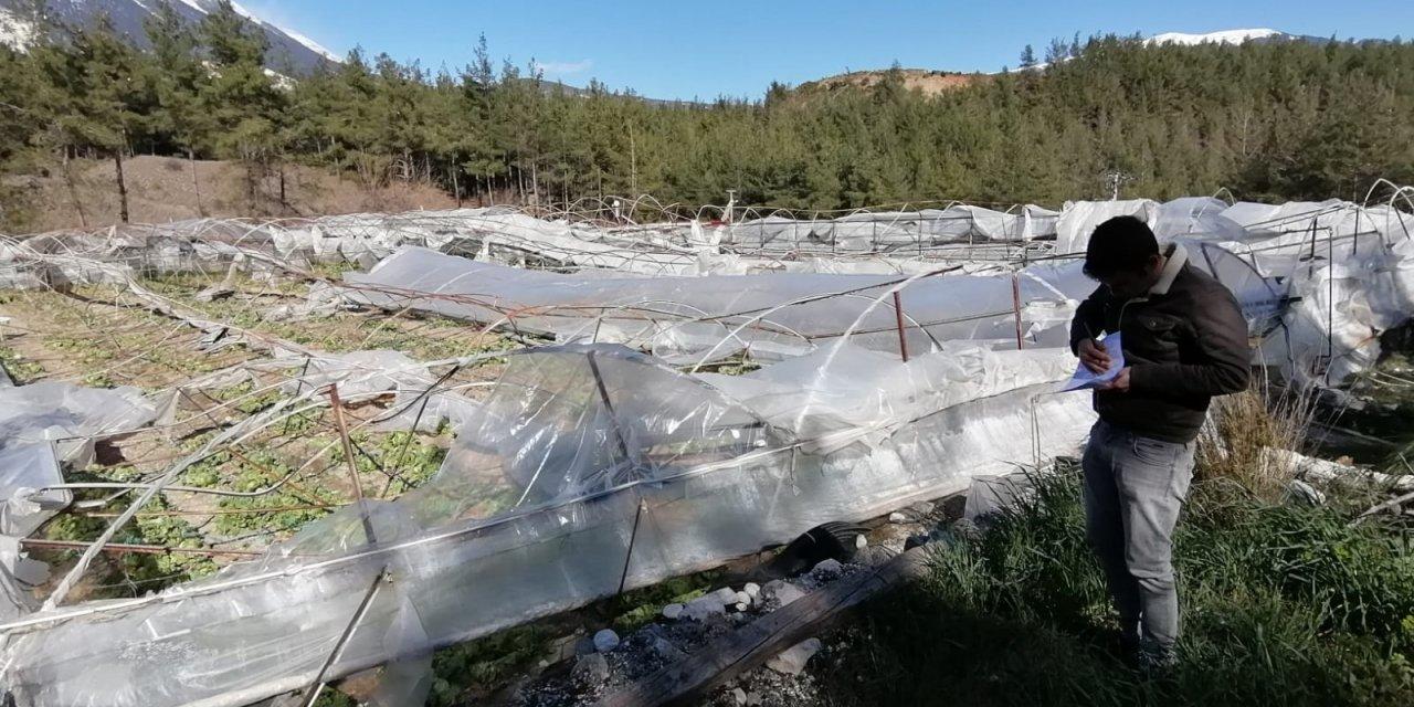Antalya'da şiddetli rüzgar seraları vurdu