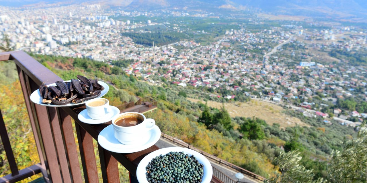 Tarihi kalenin çevresindeki menengiç ve keçiboynuzundan kahveye yoğun ilgi