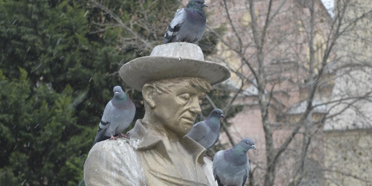 Korona virüsü nedeniyle güvercinler de aç kaldı