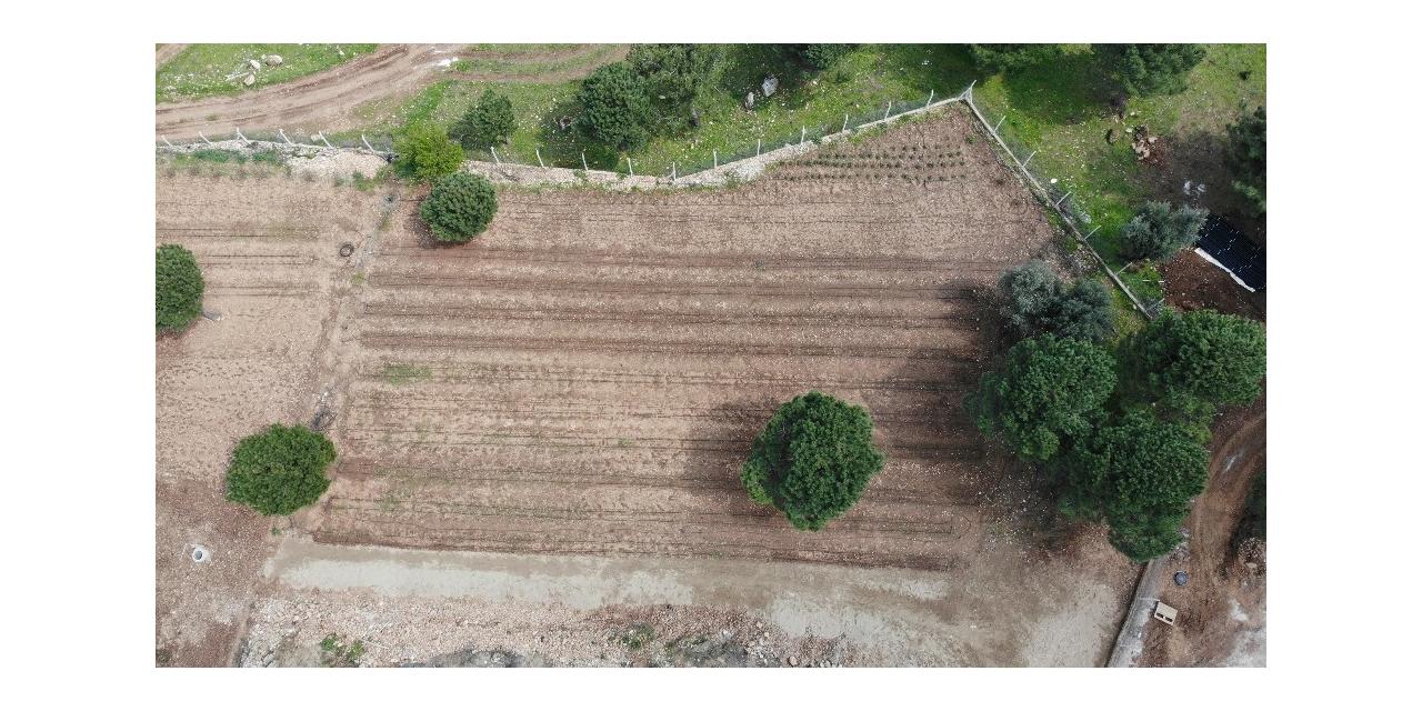 PAÜ, BİYOM arazisinde hiçbir bitkiye zarar vermeden alt yapı çalışmasını tamamladı