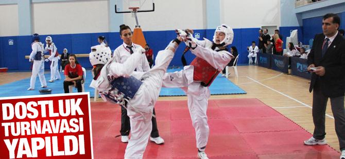 İllerarası 'Taekwondo Dostluk Turnavası' Yapıldı