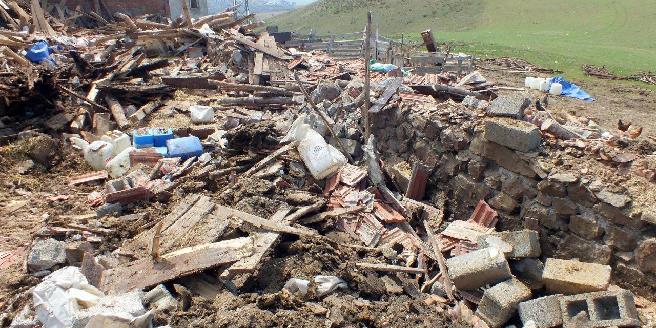 Yozgat'ta şiddetli rüzgardan yıkılan ahırda 7 hayvan telef oldu
