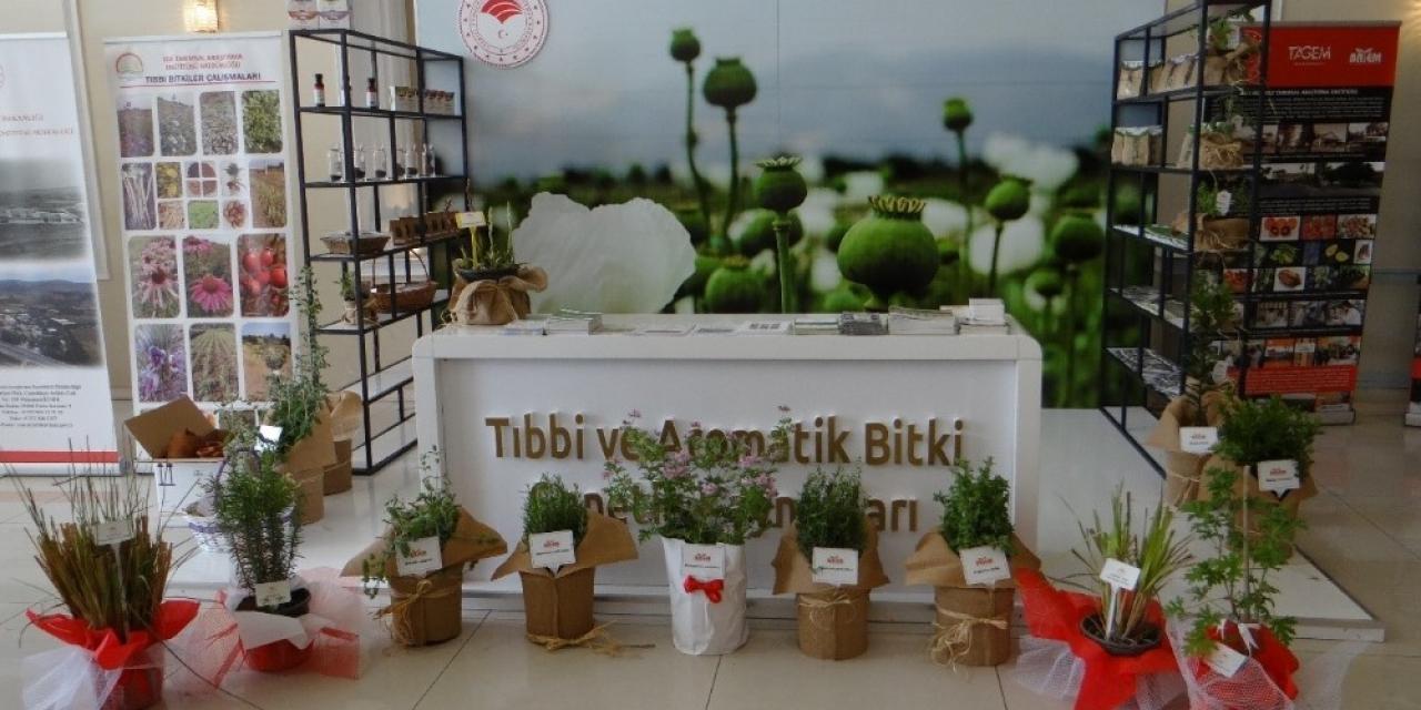 Tarımdan COVİD-19 Türkiye Web Portalına destek