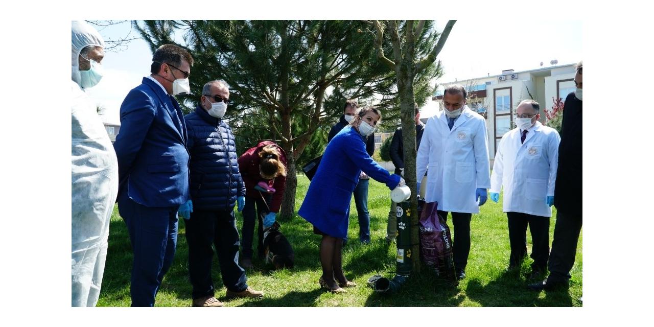 Mustafakemalpaşa'da sokak hayvanlarına tam destek