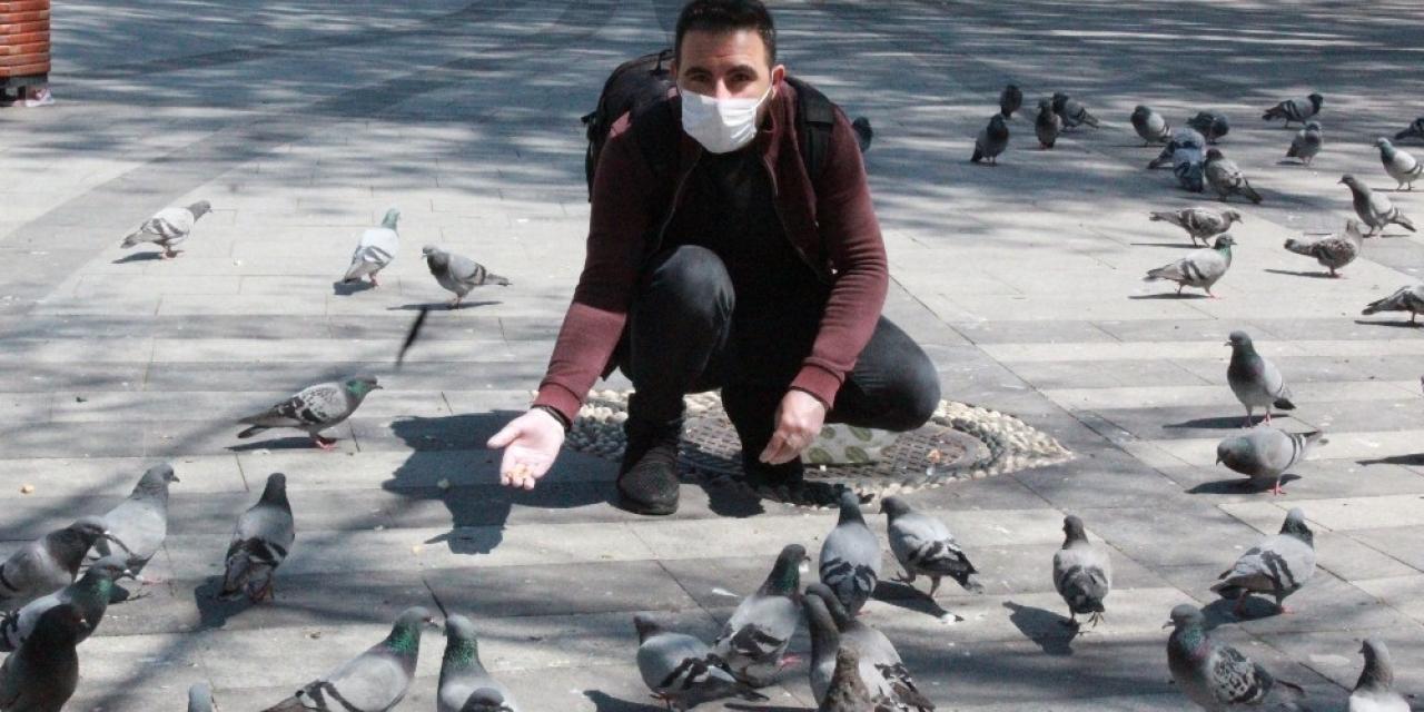 Sokaklar boş kalınca aç kalan güvercinleri gazeteciler besledi