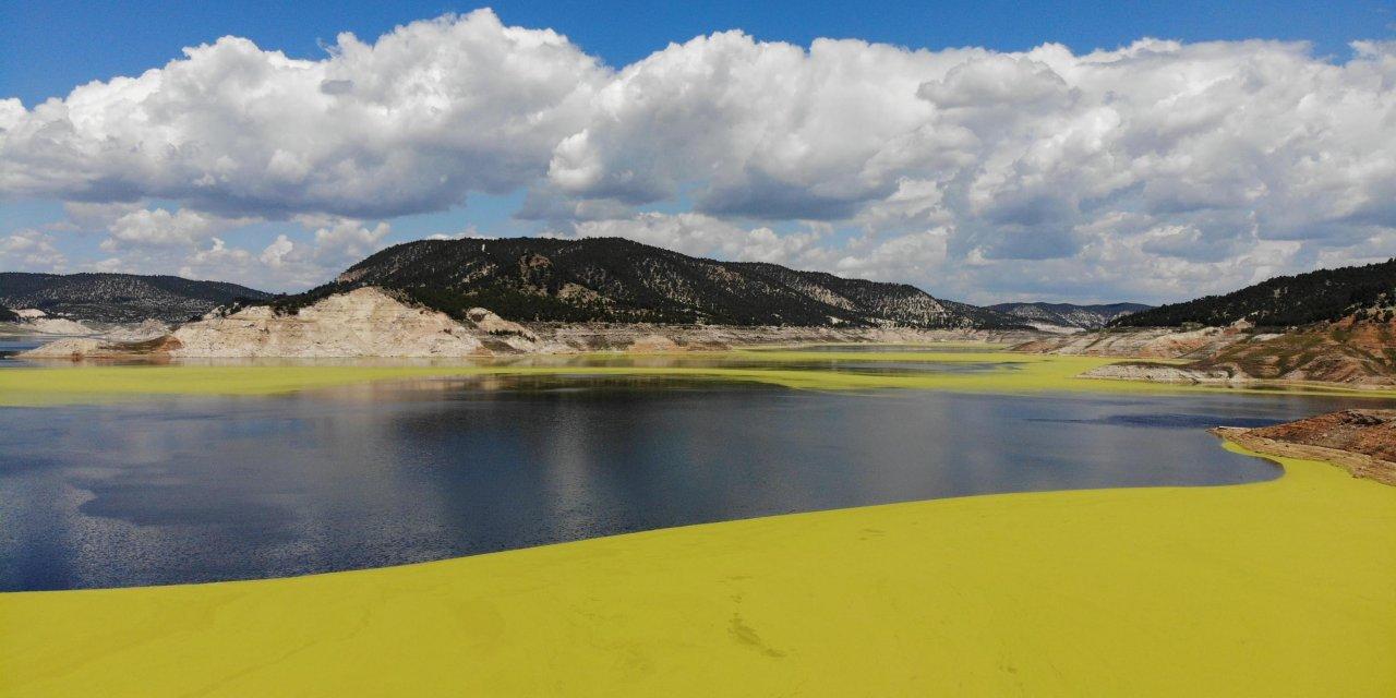 Baraj göleti üzerinde oluşan yeşil tabaka tedirgin etti
