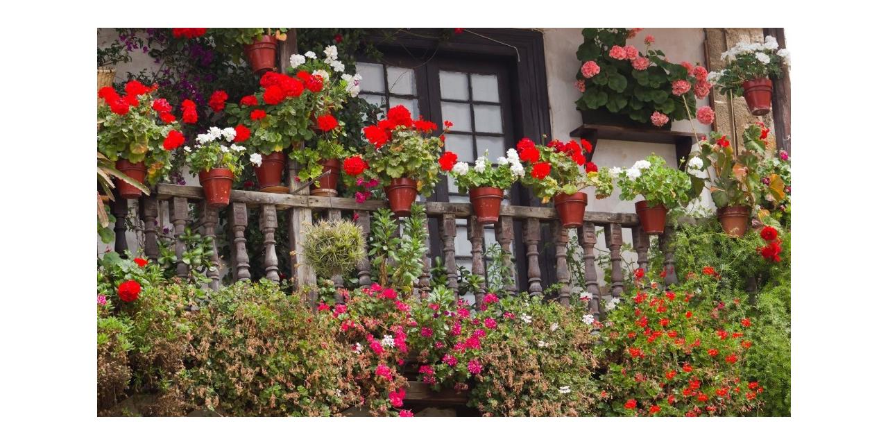 Ankara'da en güzel pencere, balkon ve teraslar yarışma ile belirlenecek
