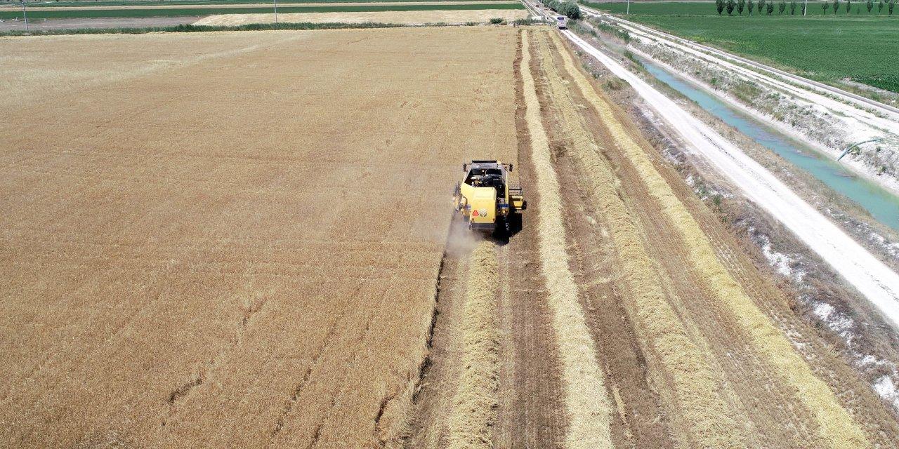 'Hububat alım fiyatları, çiftçinin buğdaya ısınmasına vesile oldu'