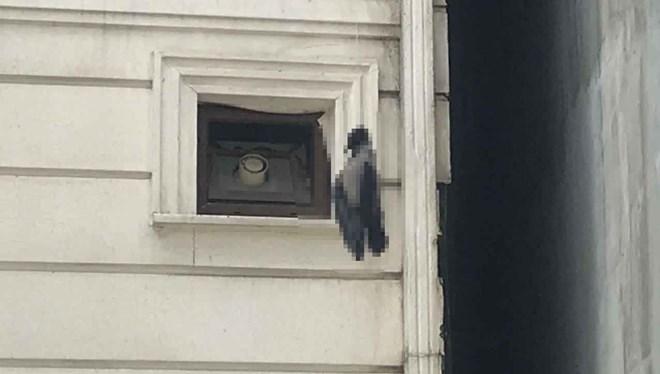 İstanbul Pendik'te tepki çeken görüntü! Hayvan vahşeti bitmiyor