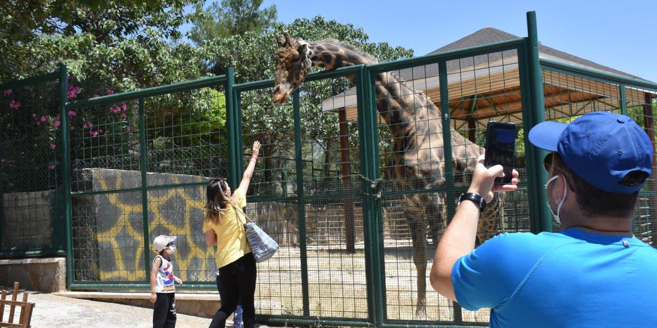 Gaziantep Hayvanat Bahçesini 3 haftada 25 bin kişi ziyaret etti