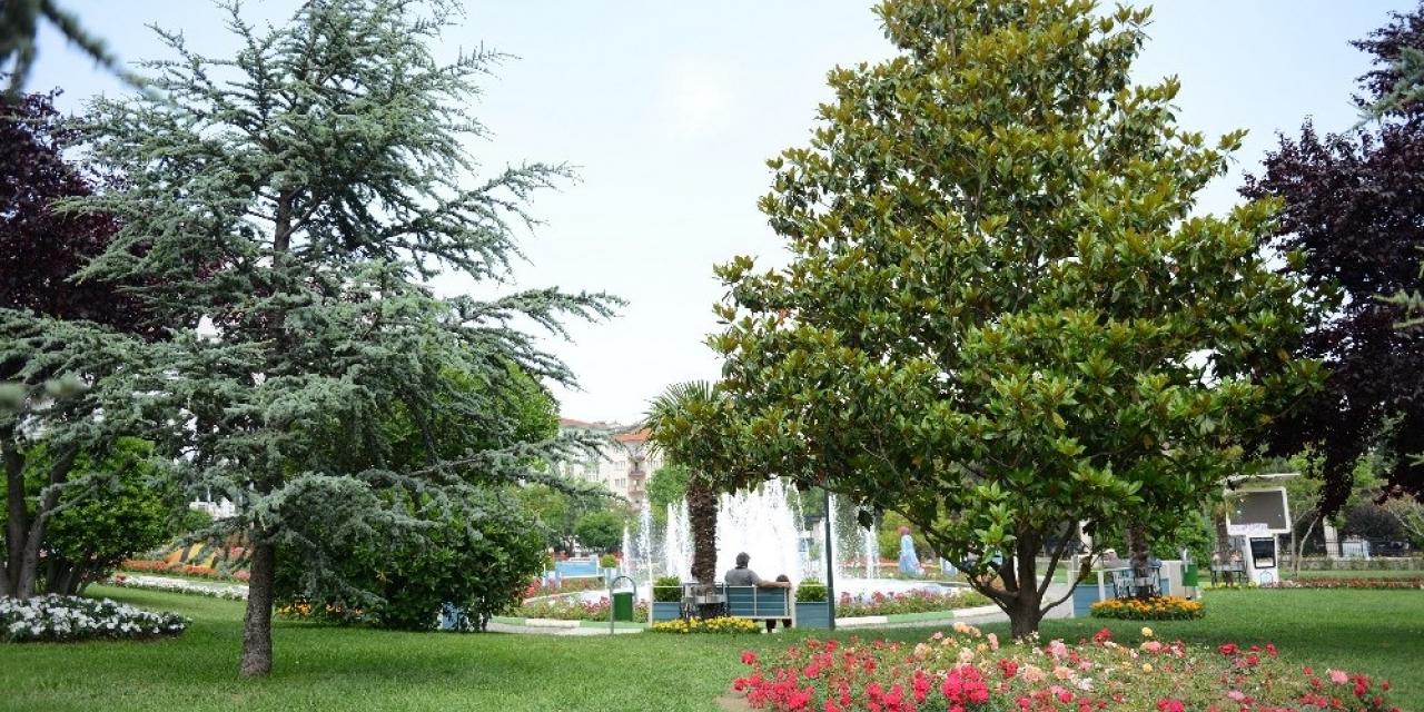 Yaz renkleri Yıldırım parklarını süslüyor
