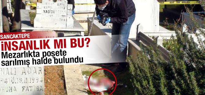 Mezarlıkta Poşete Sarılmış Halde Bebek Cesedi Bulundu