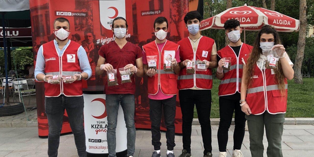 Kızılay gönüllüleri, sokak hayvanları için mama dağıtıyor